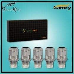 Résistances KAMRY K1000 0.5 ohm par Kamry